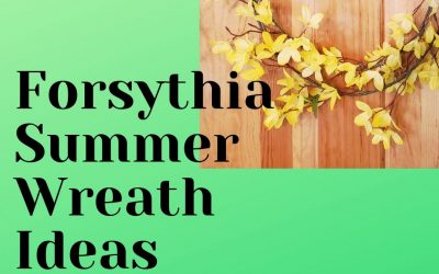 Forsythia Summer Wreath Ideas